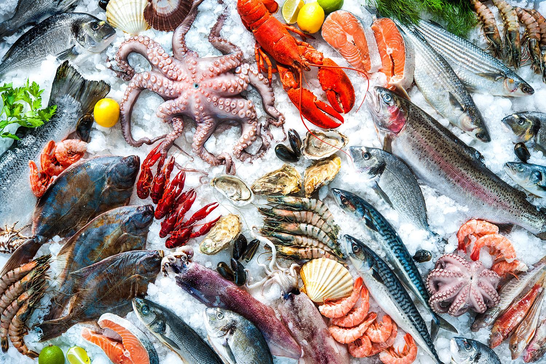 Anche Il Pesce Ha Una Sua Stagionalità Dottssa Beatrice Margani