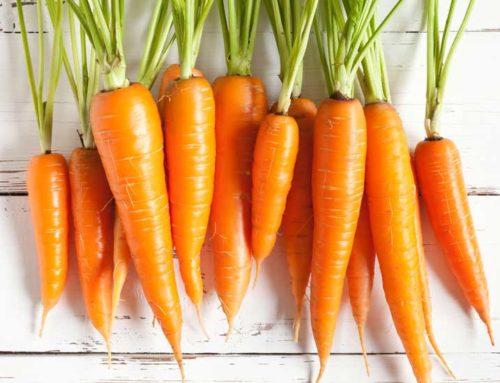 Torta di carote di M.C.